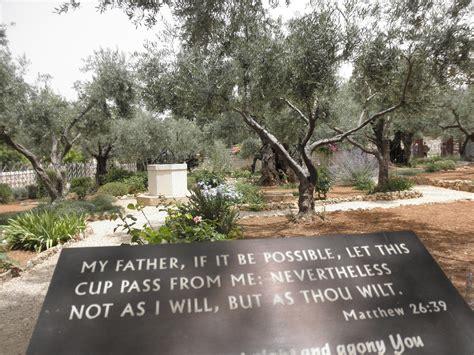 saturday june  mount  olives kidron valley