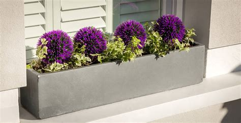 Bay Window Planter Box by Large Window Box Planter In Parisian Grey By Bay And Box