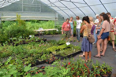 nursery plants craft tour useful plants nursery organicgrowersschool