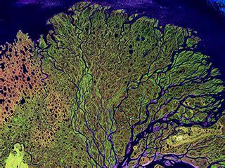 climate change: climate resource center lena delta, russia
