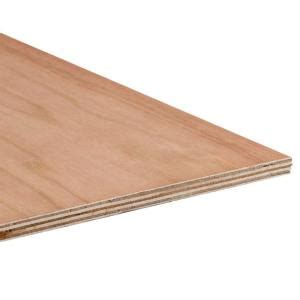 home depot paint grade plywood 3 4 in 4 ft x 8 ft cedar plywood 374521 the home depot