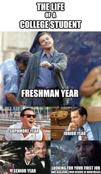 funny college memes thatll  adjusting  college