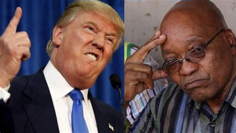 donald trump zuma zuma and trump birds of the same feather allnet africa
