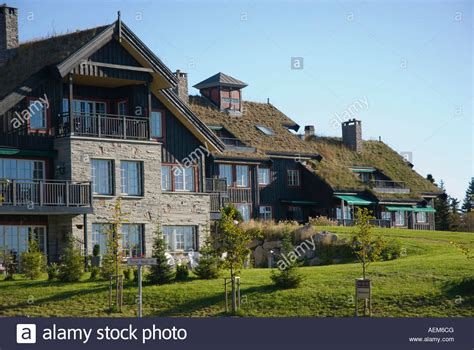 how to buy a house in norway houses with turf roofs oslo norway stock photo royalty free image 13712751 alamy
