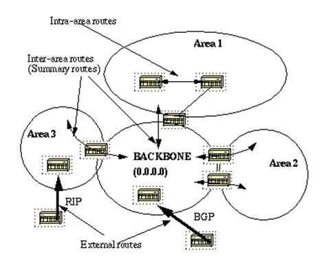 backbone network diagram ospf design guide cisco
