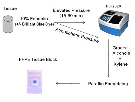 elevated pressure improves the rate of formalin