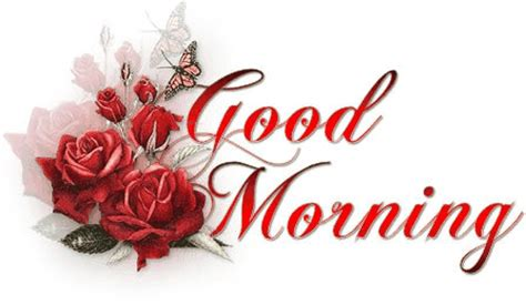 imagenes good morning saludos im 225 genes de good morning saludos de rosas