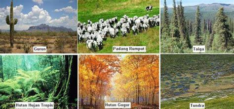 Mengenal Perbedaan Air Zam Zam Dan Air Kangen mengenal hewan dan tumbuhan mengenal biosfer