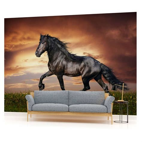 kinderzimmer bild pferd fototapete wandbild fototapeten bild tapete schwarzes