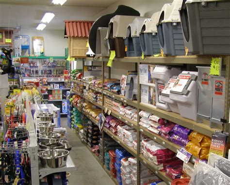 pit stores pet supplies your best links