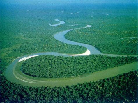 amazon river 10 interesting amazon river facts daily world facts