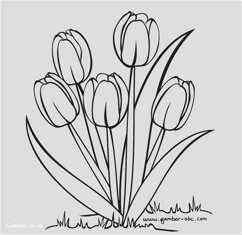 sketsa gambar daun mangga garlerisket