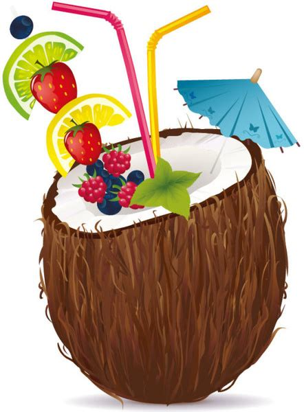 coconut  vector    vector  commercial  format ai eps cdr svg