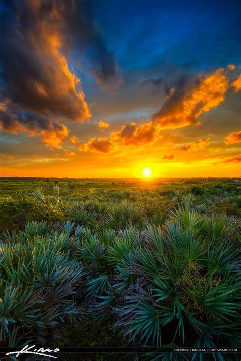 Landscape Photography In Florida Juno Dunes Area Sunset Florida Landscape