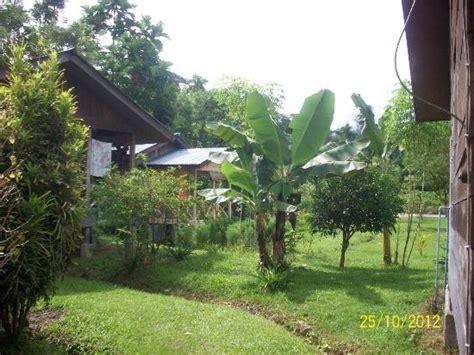 Cinta Alam lodges picture of wisma cinta alam sumatra tripadvisor