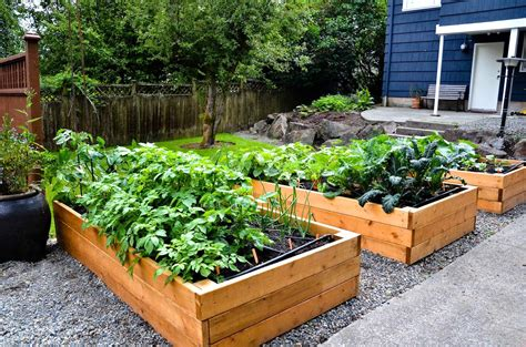 Raised Vegetable Garden Layout Raised Vegetable Garden Design Plans The Garden Inspirations