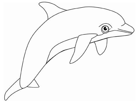 halaman belajar mewarnai gambar lumba lumba untuk anak