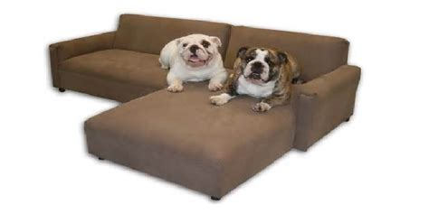 best sofa material for dogs best sofa dog owners cozysofa info
