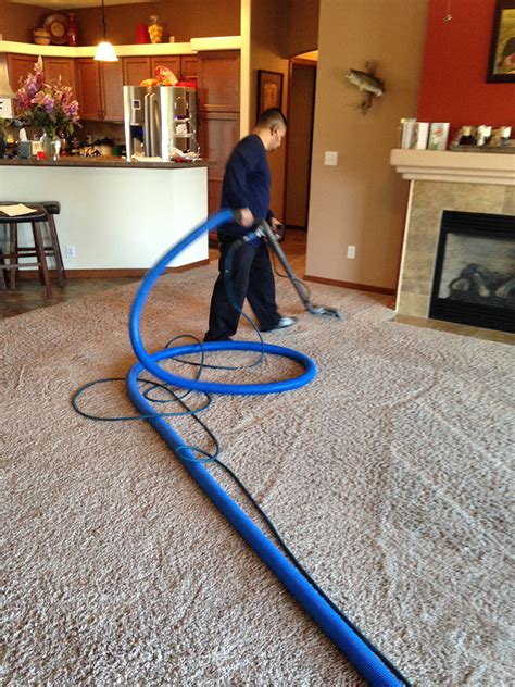 carpet and upholstery cleaners reviews zion carpet cleaning carpet review