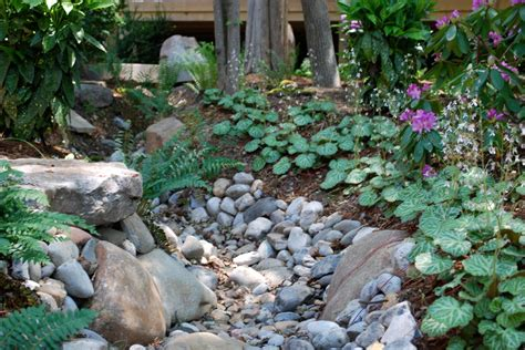 dry creek bed landscaping contemporary landscape with dry creek bed landscaping