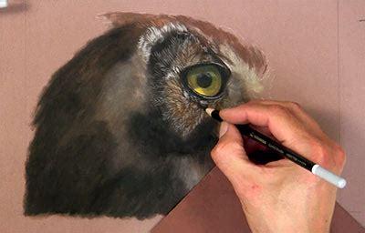 pastel pencil techniques owl
