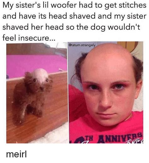 Shaved Head Meme - 25 best memes about head shave head shave memes