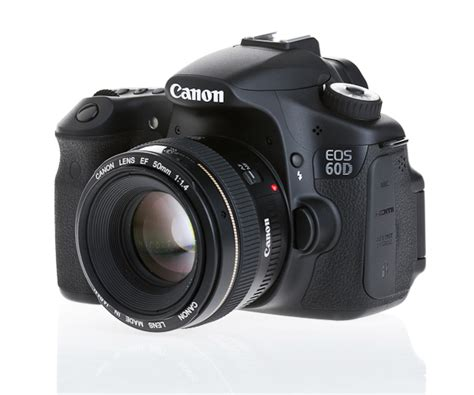 60d canon review one week with the canon 60d nicolesy