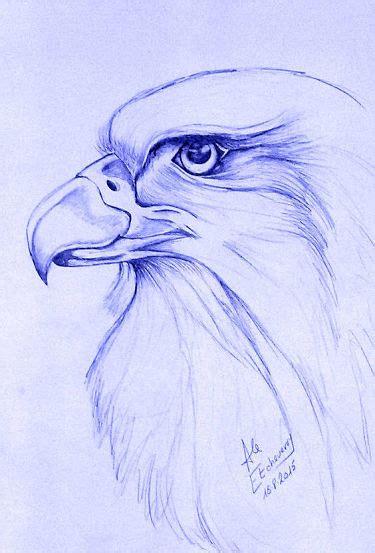 imagenes para dibujar muy buenas c 243 mo aprender a dibujar muy bien paso a paso gu 237 a completa