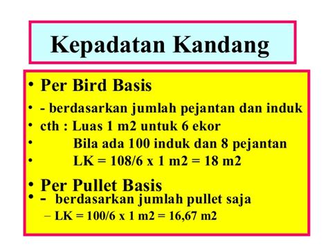 Bibit Ayam Potong Per 100 Ekor ayam bibit1