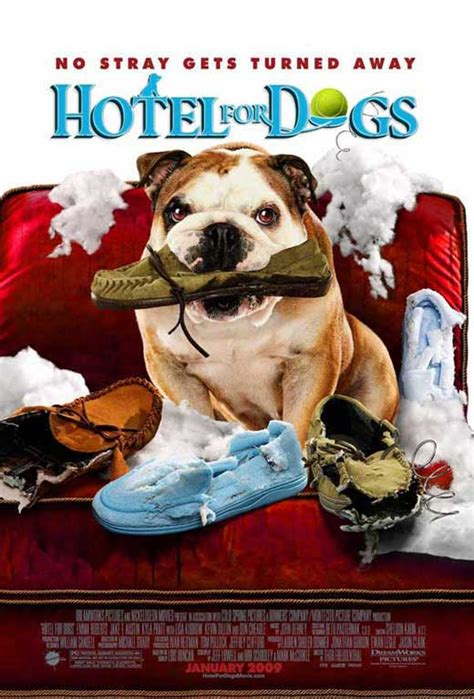 hotel for dogs cast hotel for dogs posters from poster shop