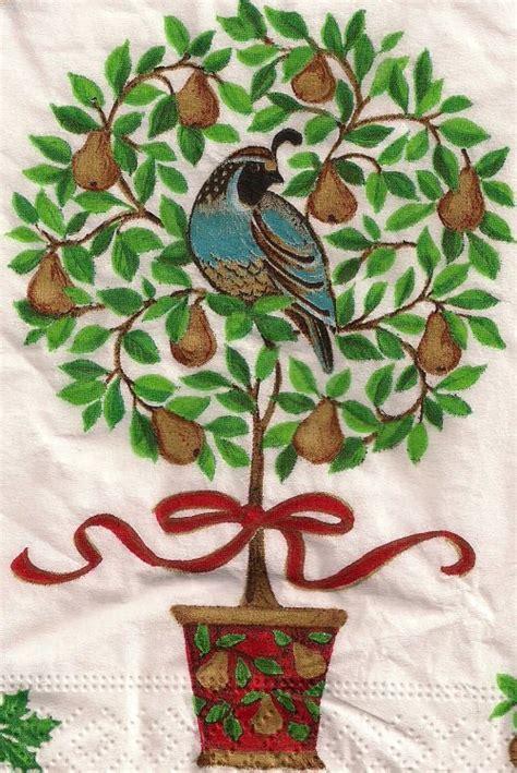 tat s heaven a partridge in a pear tree