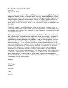 sle opinion letter