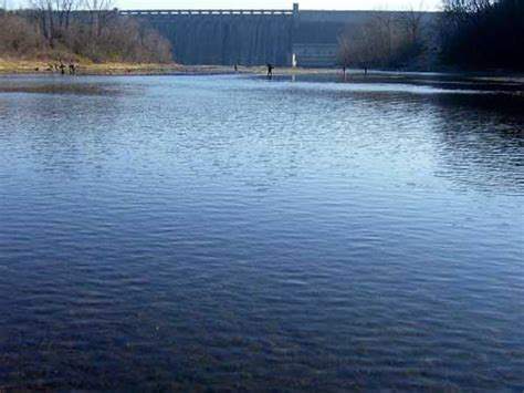 table rock water temp access points that offer great wading and wonderful fly