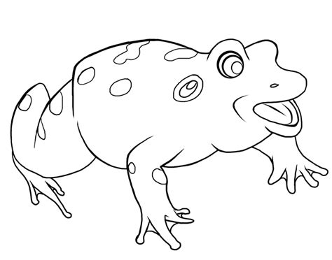 Free Frog Coloring Pages To Print Out And Color Kids Colouring Pages Free L