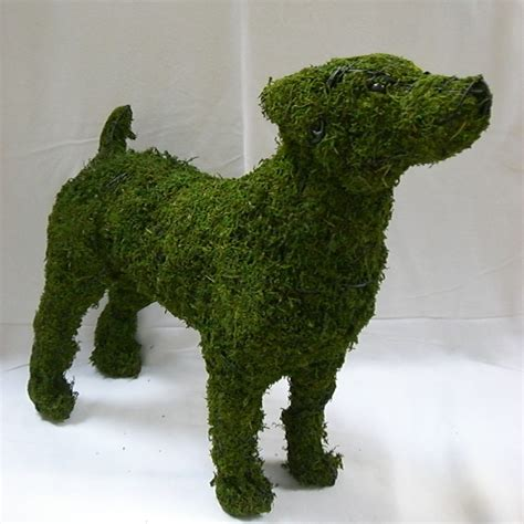 Outdoor Vases Large Dog Jack Russell Mossed Topiary Frame Gardening Delights