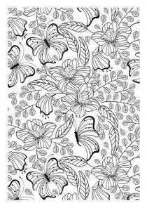 desenho colorir borboletas 2