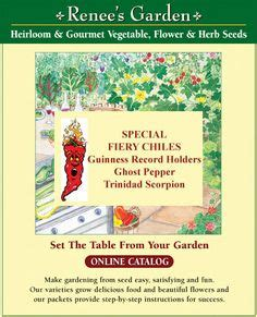 Gardening Catalogs Seed Companies by Garden Seed Companies On Seed Packets Flower