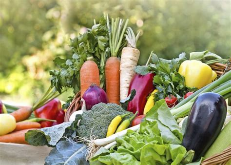 vegetables b vitamins vitamin b vegetable list livestrong