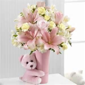 Ftdi marketplace the ftd 174 baby girl big hug 174 bouquet
