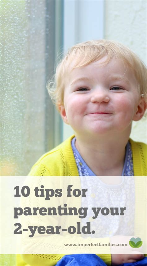 how to your 2 year 10 tips for parenting your 2 year