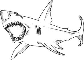 shark jaws coloring pages kids shark jaws coloring pages kids place color