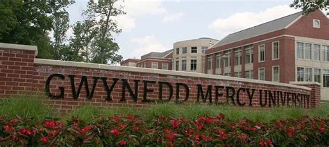 Is Mercy College Mba Program Accredited by Gwynedd Mercy Best Counseling Degrees