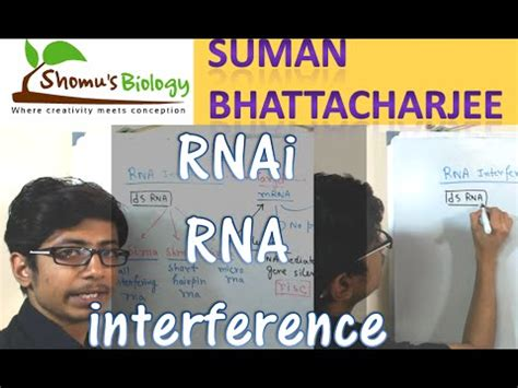 download mp3 virzha sirna rna interference rnai by nature video download youtube mp3