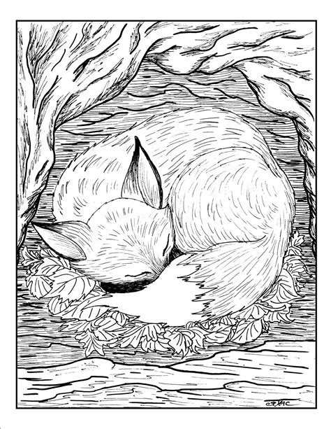 free coloring pages for grown ups fox sleeping gianfreda net