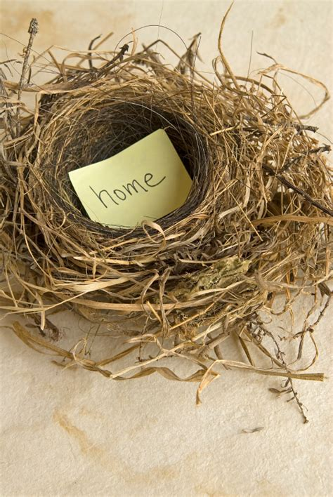 empty nest house plans empty nest house plans the fun starts now shamrock financial