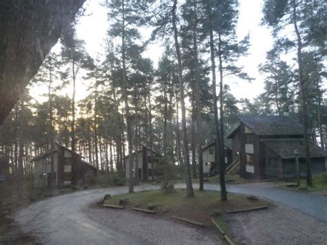 Centre Parcs Log Cabins by Reindeer Picture Of Center Parcs Whinfell