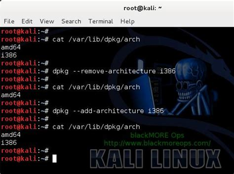 tutorial update kali linux how to install skype in kali linux 2 0 kali linux tutorial
