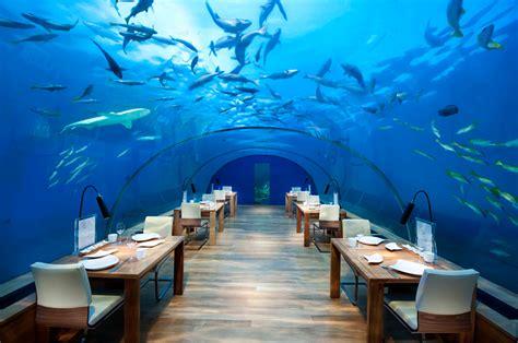 ithaa undersea restaurant dine at the phenomenal ithaa the underwater restaurant