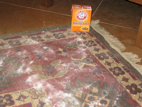 baking soda on rug ms not so baking soda for your carpet