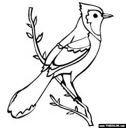 blue bird colouring pages bird to color blue coloring page free blue